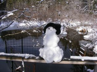 My one snowman of the season winter 2013.
