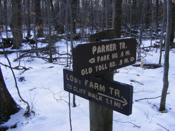 A path to take another day: Lost Farm trail.