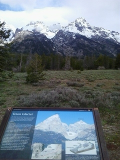 Teton Glacier seen from the bike path along Teton Road.