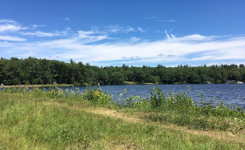 Rockwood Pond