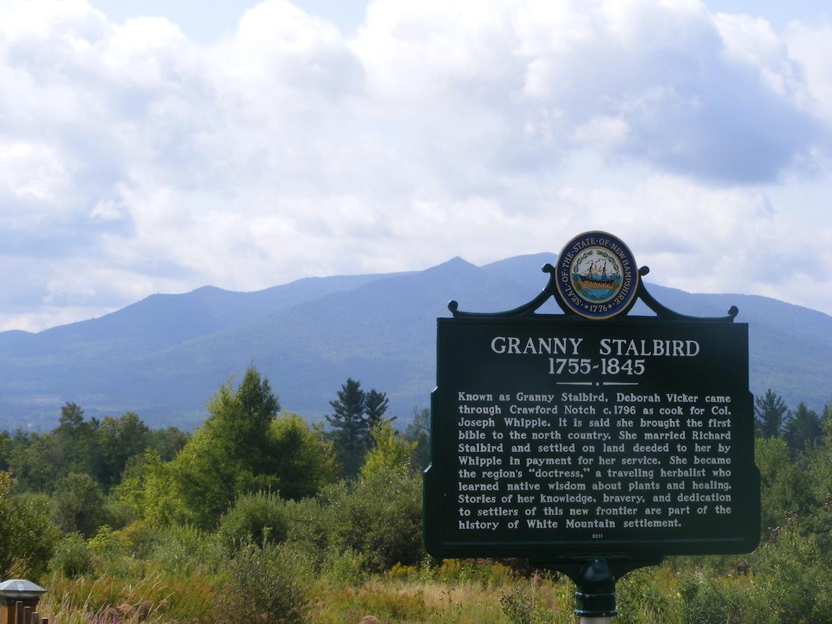 Stalbird marker with Mt Martha