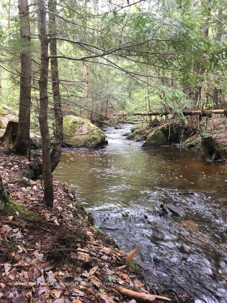 Bretzfelder Park, Bethlehem New Hampshire