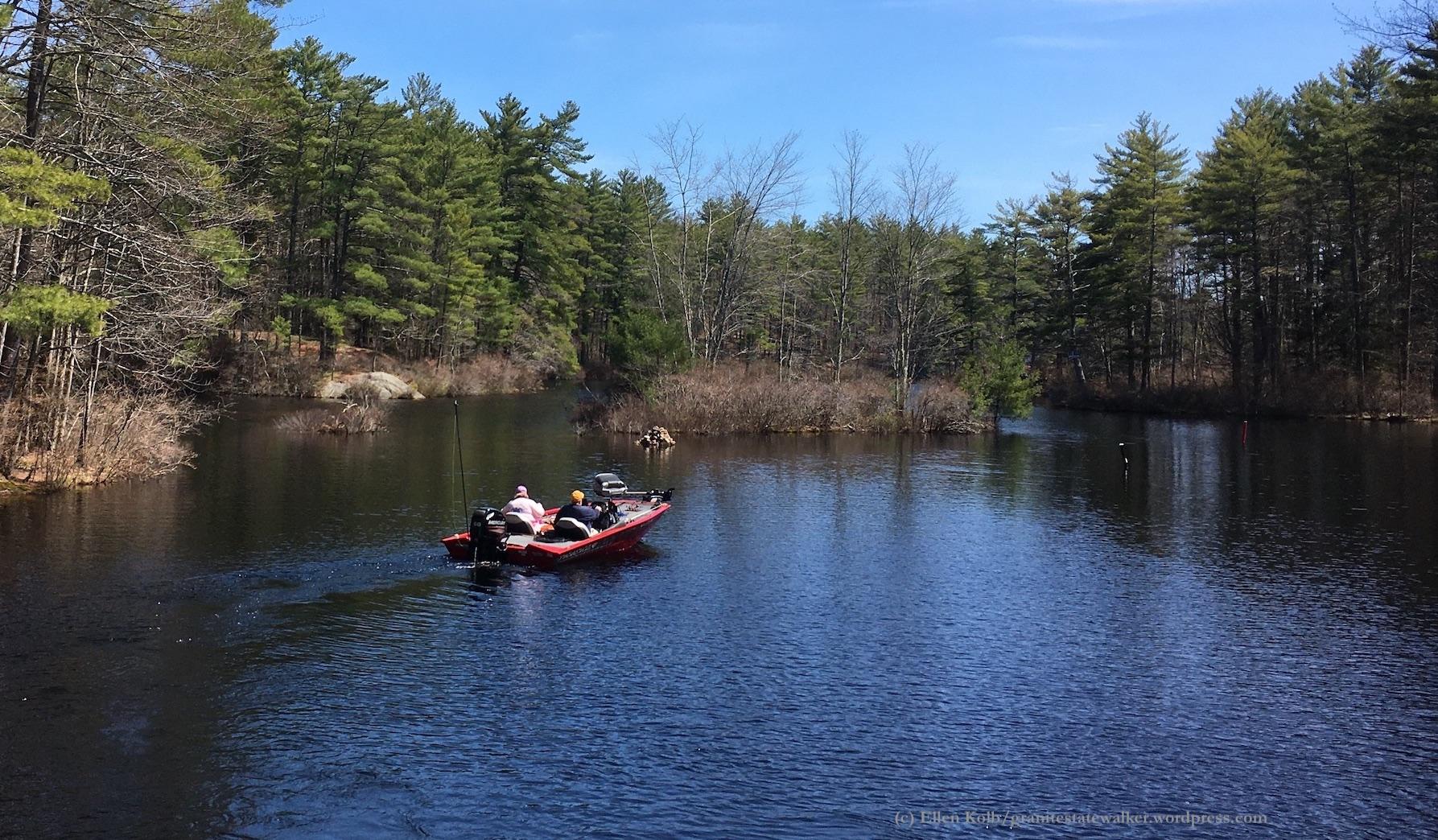 Pawtuckaway State Park, NH