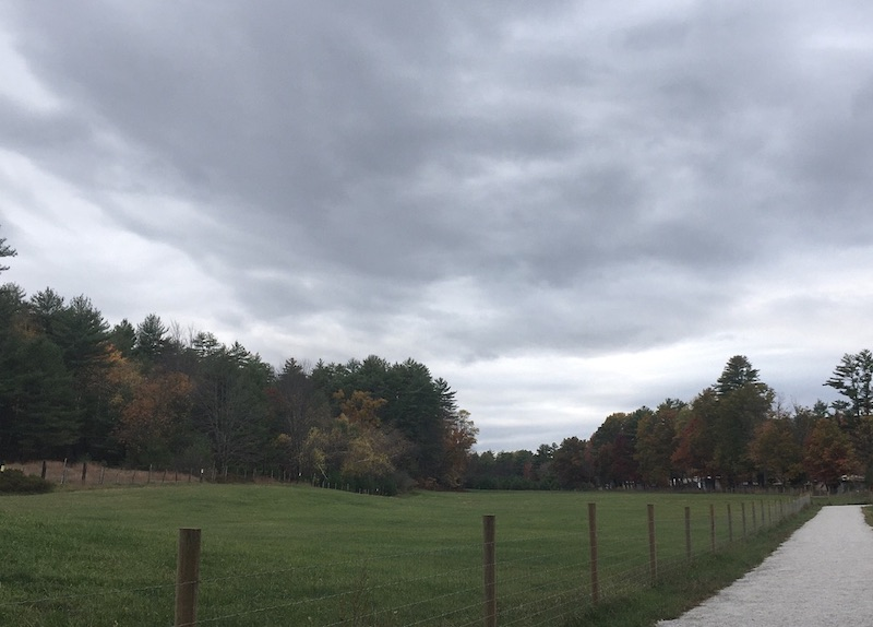 Cloudy day with rail trail