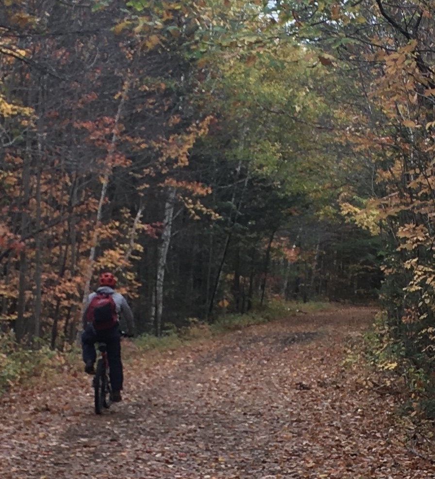 bicyclist on Presidential Rail Trail, autumn, New Hampshire, photo by Ellen Kolb
