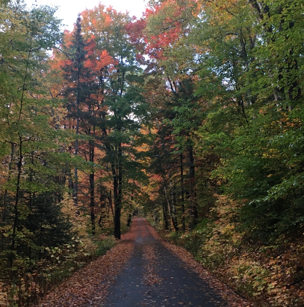 narrow road in autumn, Weeks State Park New Hampshire, photo by Ellen Kolb
