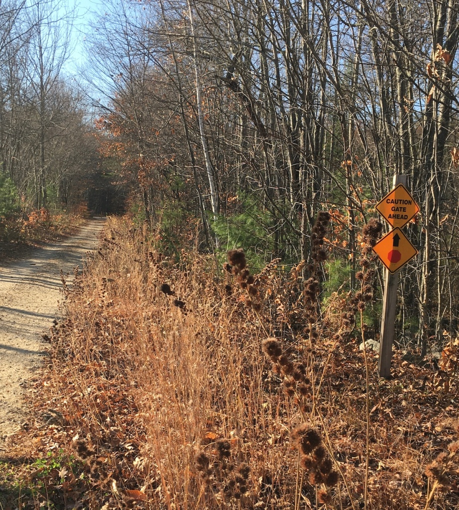 New England rail trail autumn