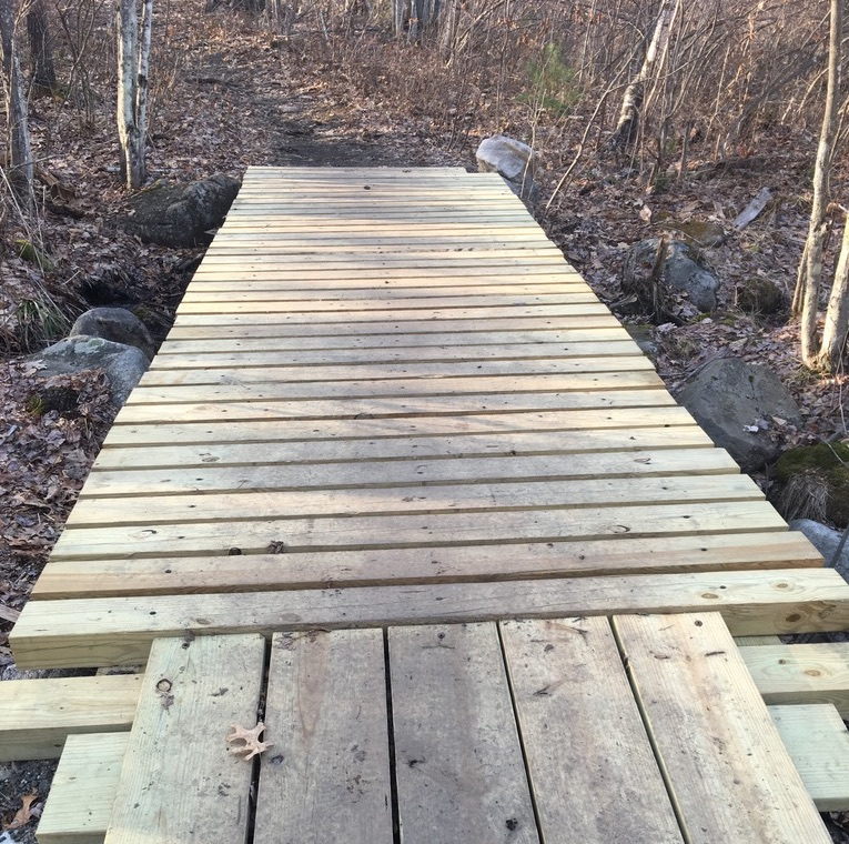 Simple wooden bridge on forest trail